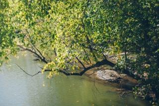 Riverfront - Boyden Project