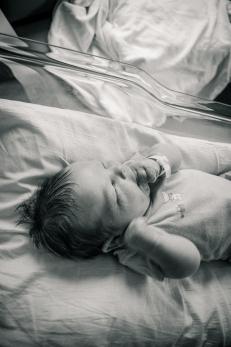 Baby Artressa